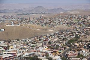 Chili Arica