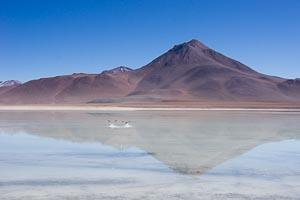 Laguna blanca et Licancabur