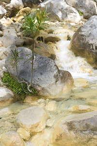 gorges Samaria