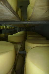 Omalos fromagerie