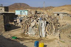 Ethiopie Berhale