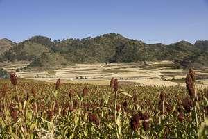 Ethiopie hauts plateaux