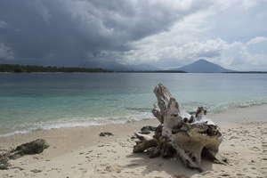 Indonésie Moluques
