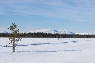 finlande ski de fond