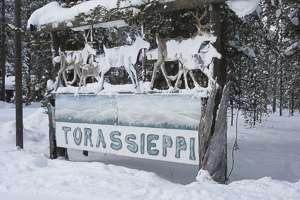 Laponie renne