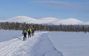 Laponie ski de fond