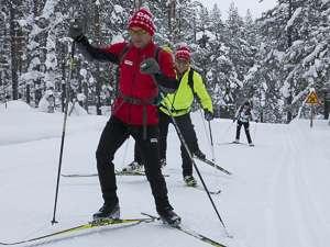 ski Laponie