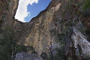Isalo canyon rats
