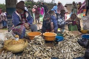 marché Zafimaniry