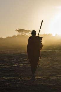 berger Massaï